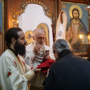 Archimandrite Zacharias (Zacharou): Happiness is to take care of who you love - Photo Journal from Liturgy