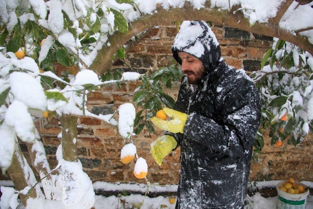 storm, ascetic- Ascetic Experience, Vatopaidi (Vatopedi), Mount Athos, Holy Mountain