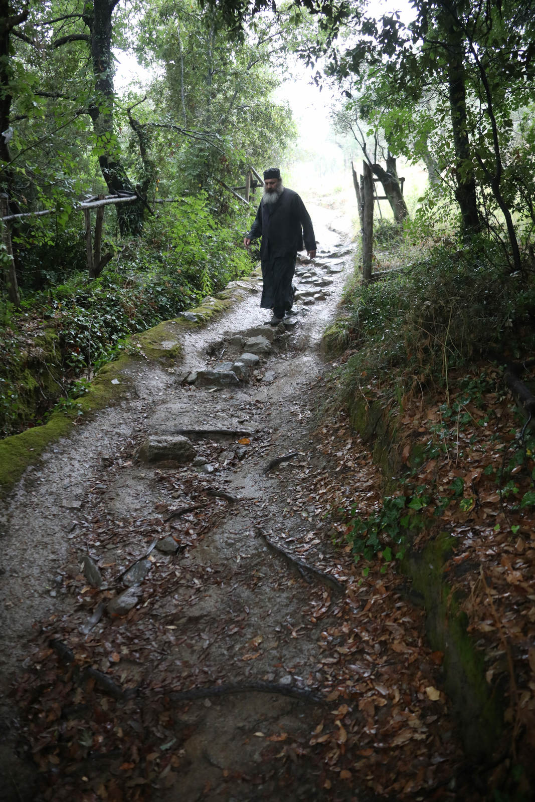 entering the footpath to Paisios of Mount Athos' cell