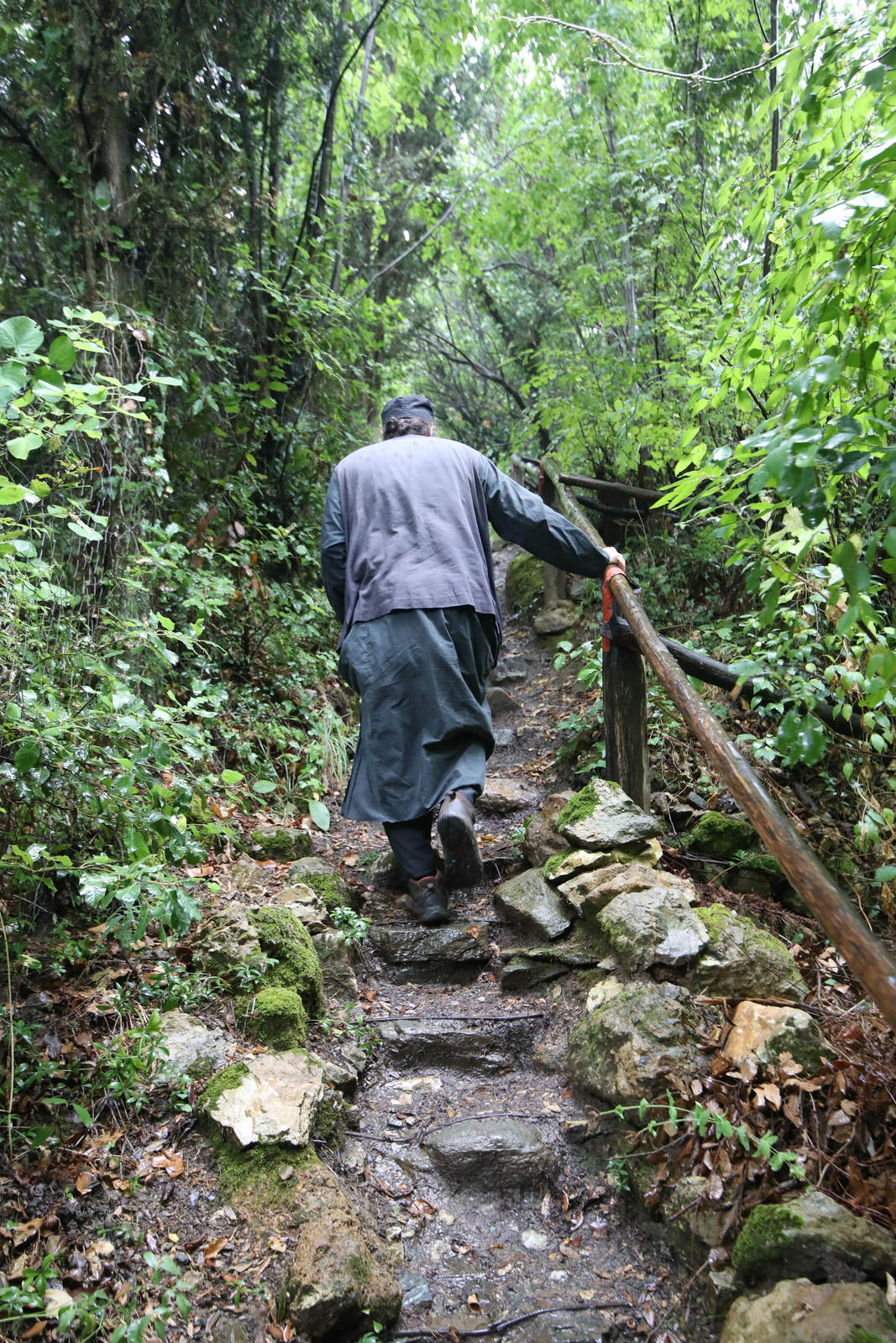 on the footpath to Paisios of Mount Athos' cell
