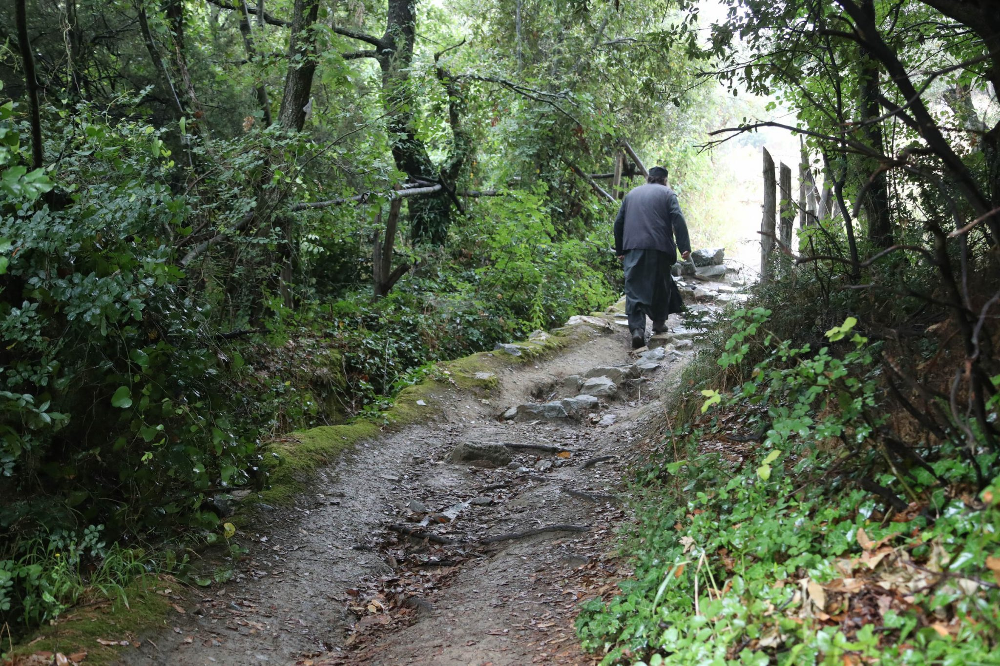 On the footpath till Paisios of Mount Athos' cell