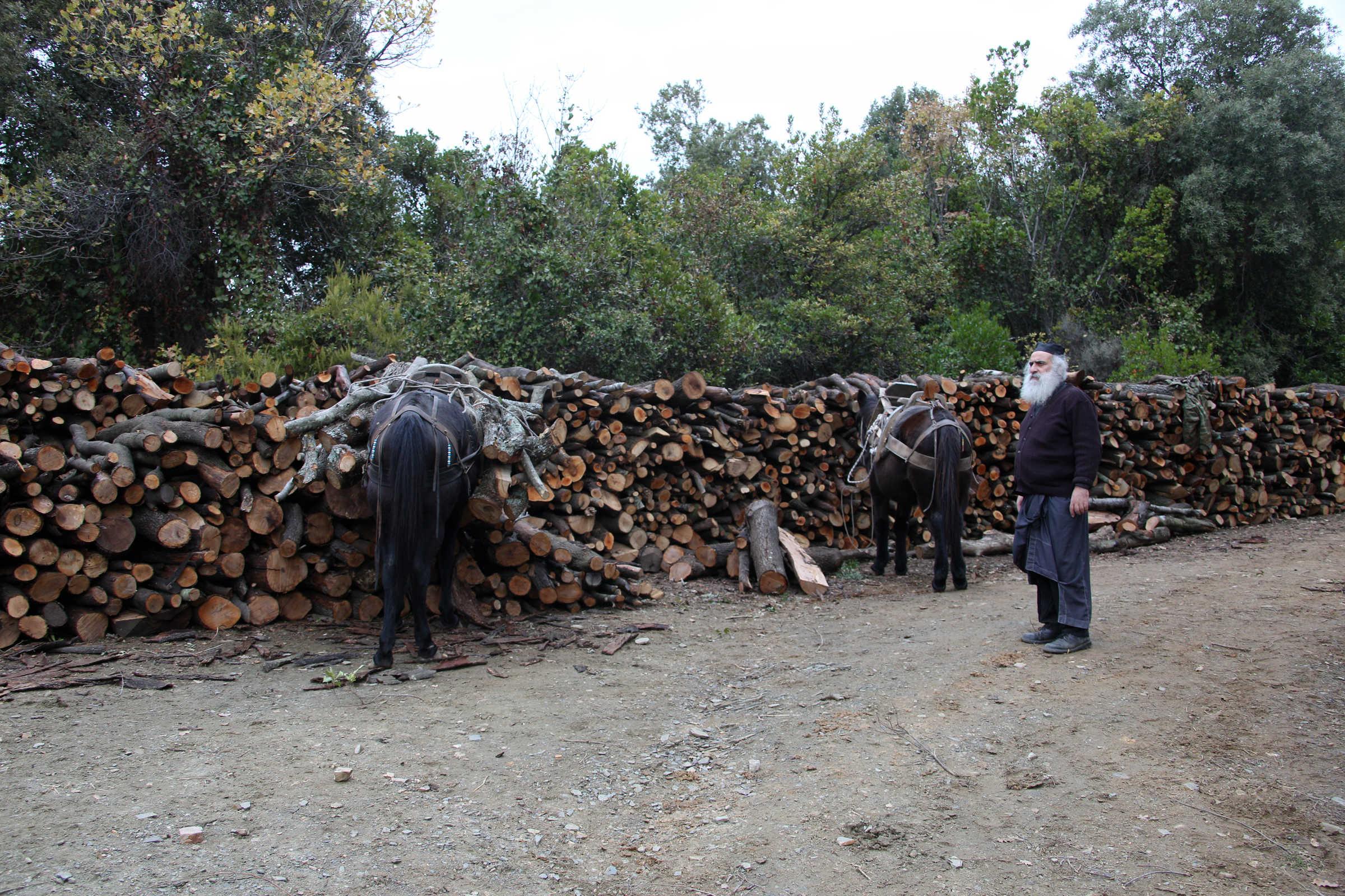 The woodcutter - (C) Vatopedi monastery, Mount Athos