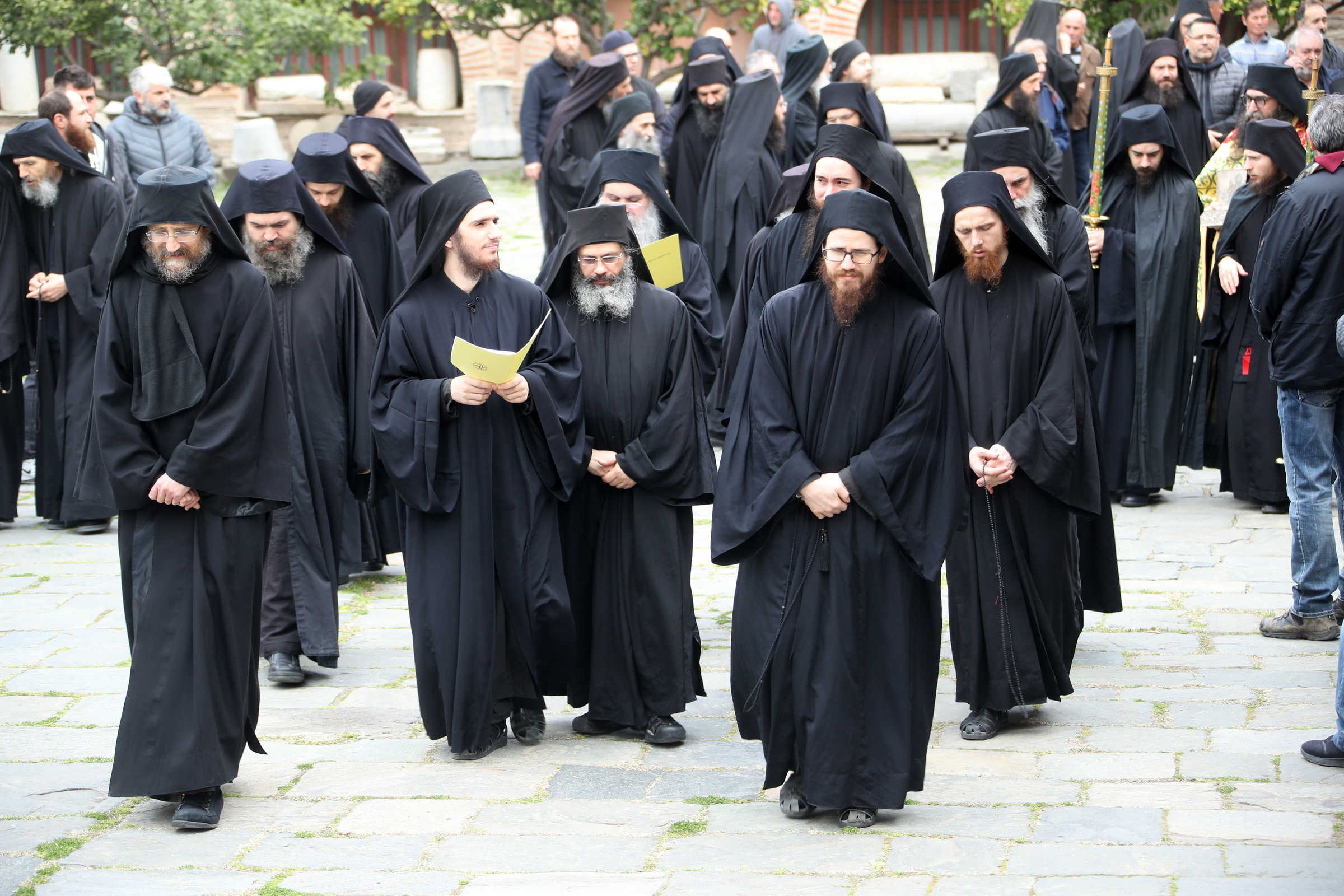 The Causes of the Pandemic - (C) Vatopedi monastery, Mount Athos